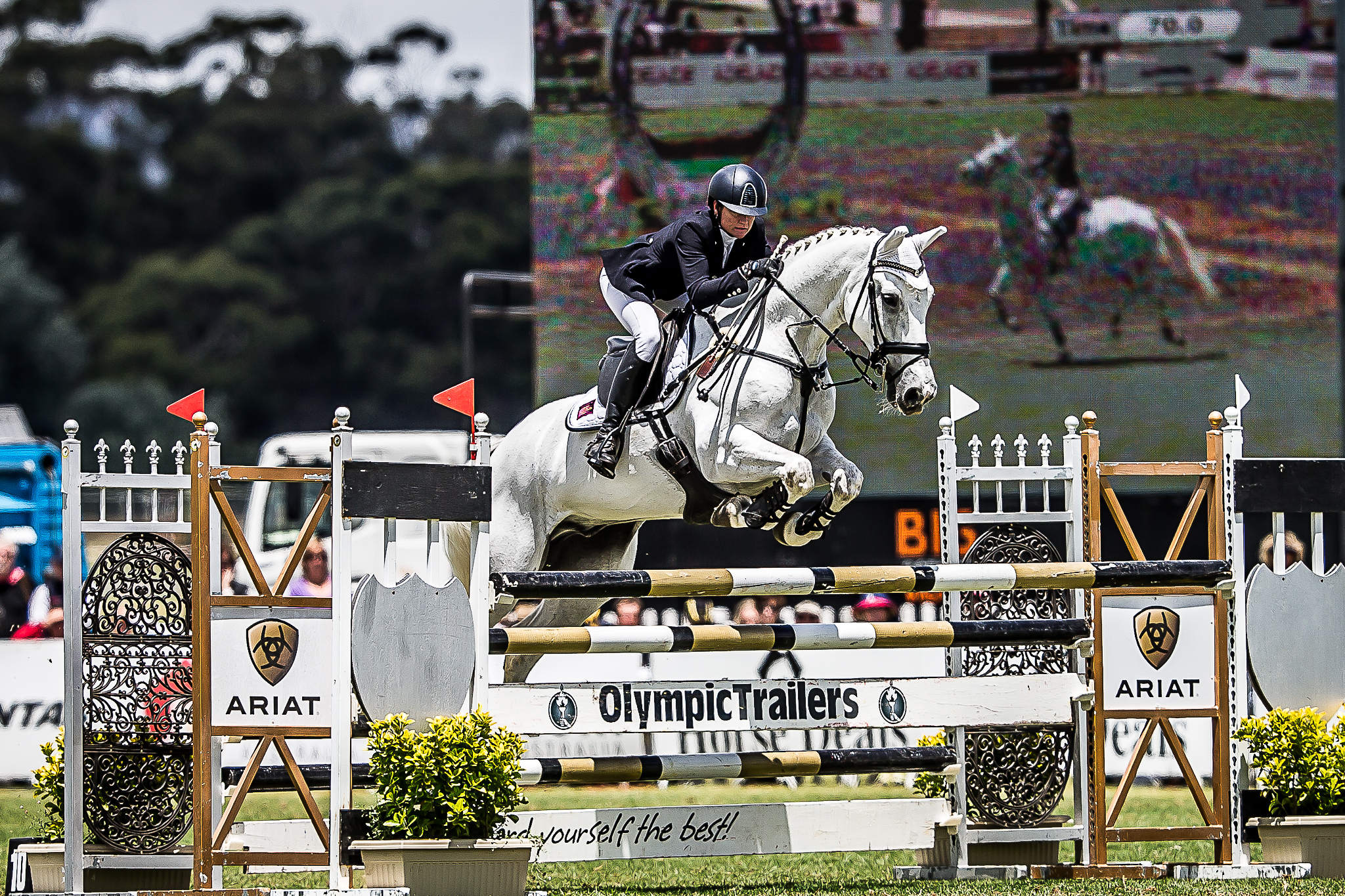 Thomas Foods International Show Jumping Day