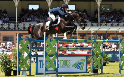 Clint jumps double clear to win Thomas Foods WC