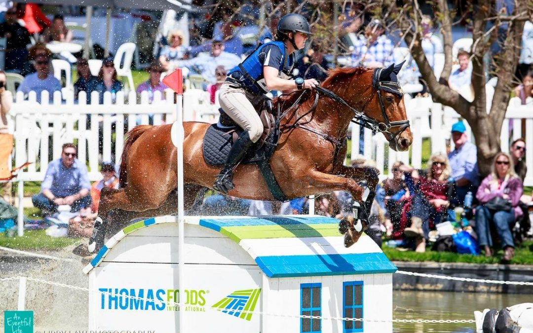 Shannon rides to victory to win Adelaide CCI4****