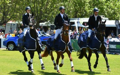 NSW wins Horseland CCI** State Team