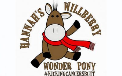 'WILLBERRY THE WONDER PONY' COMES TO ADELAIDE