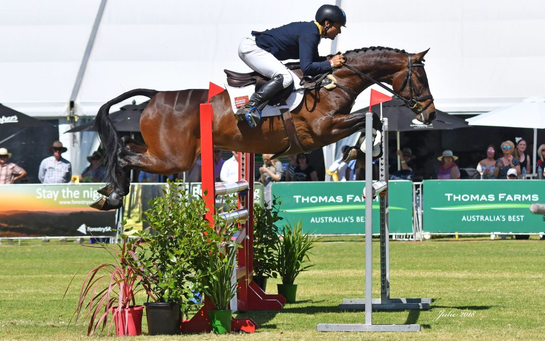Olympian's rise to the top in CCI2*